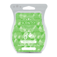 Scentsy Wild What A Melon Bar