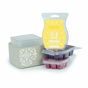 Scentsy System - Deluxe