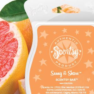 Sunny & Share Scentsy Bar