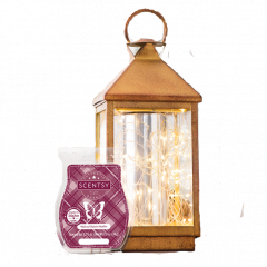 Scent & Warmer Of The Month <br /> <b>Save 10%</b>
