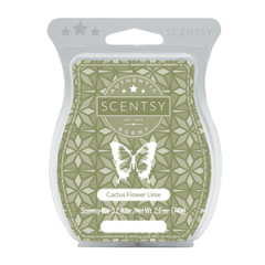Cactus Flower Lime Scentsy Bar