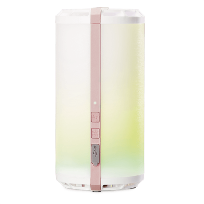 Rose Gold Scentsy Go Unit