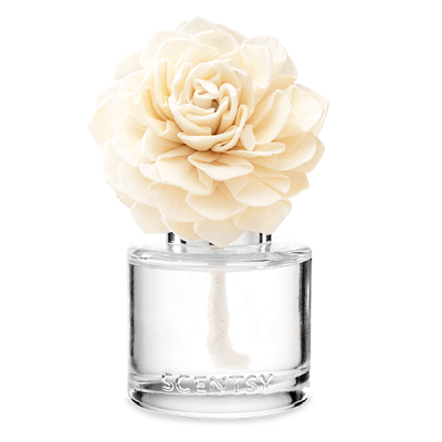 Amazon Rain Fragrance Flower